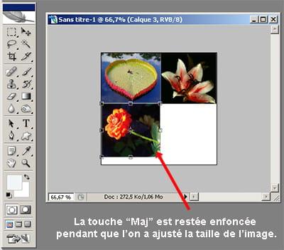 cette manipulation est très utile lorsque vous créez un photomontage par