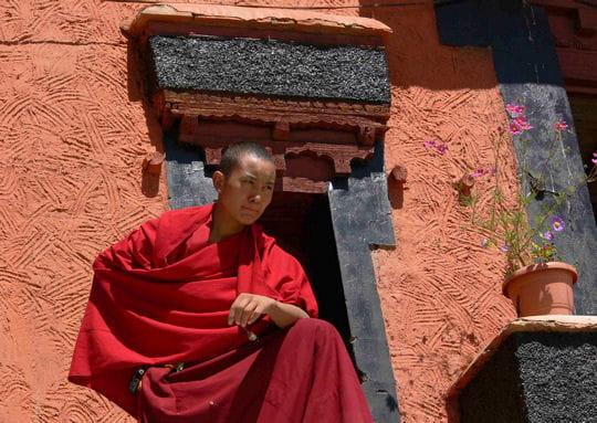 Le moine et la fleur