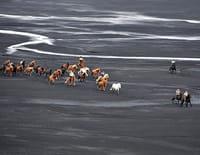 Ushuaïa nature : On a marché sur l'Islande