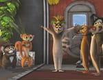 Roi Julian ! L'élu des lémurs