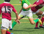 Rugby : Coupe d'automne des nations - Pays de Galles / Angleterre