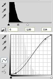 les courbes et les niveaux ajustés