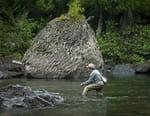 Roi des rivières