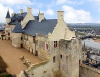 Les châteaux de la Loire : Chinon