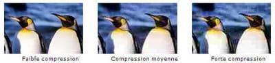 série d'images enregistrées en jpeg à différents taux de compression. le jpeg