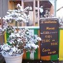 L'Inattendu  - devant de terrasse sous la neige -