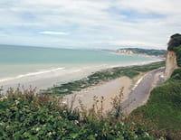 Des racines et des ailes : En Normandie, du Mont-Saint-Michel au pays de Caux