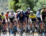 Cyclisme - Tour des Flandres