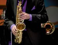 Rendez-vous de l'Erdre 2013 : Médéric Collignon : Hommage à King Crimson