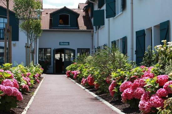 Donibane  - La belle entrée -