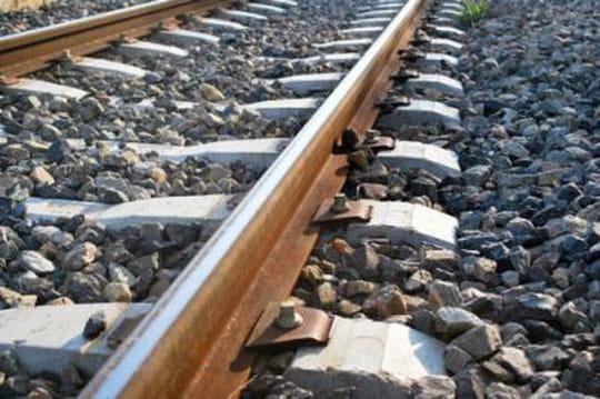 Accident de train près de Pau: le TER en cause?