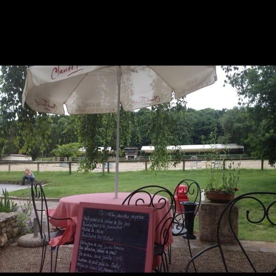 Restaurant : La Mangeoire  - Vu de la terrasse -