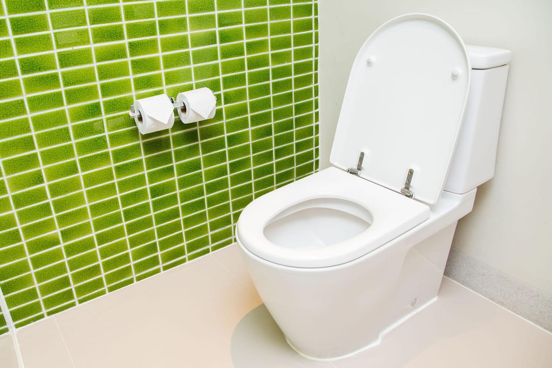 Fuite de WC: méthodes simples de réparation