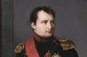 Napoléon: postérité, héritage, biographie... Mais pourquoi les commémorations font-elles polémique?