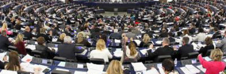 Les eurodéputés français sont-ilssinuls ?