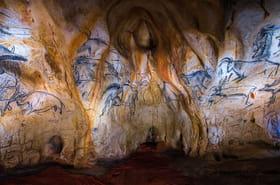 Grotte Chauvet: 26ans de découverte, les peintures en images