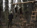 Alaska : nouvelle vie