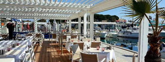 , Restaurant : La Fourmigue  - La Terrasse face aux bateaux -   © jpeg