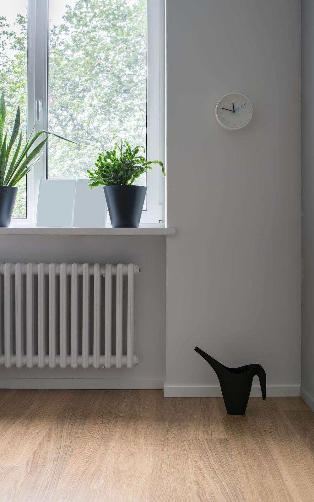 Plante D Intérieur Qui Aime La Chaleur laisser des plantes près d'un radiateur