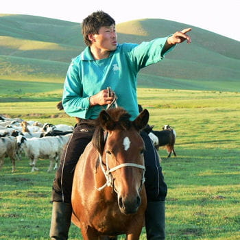 dans les steppes de mongolie