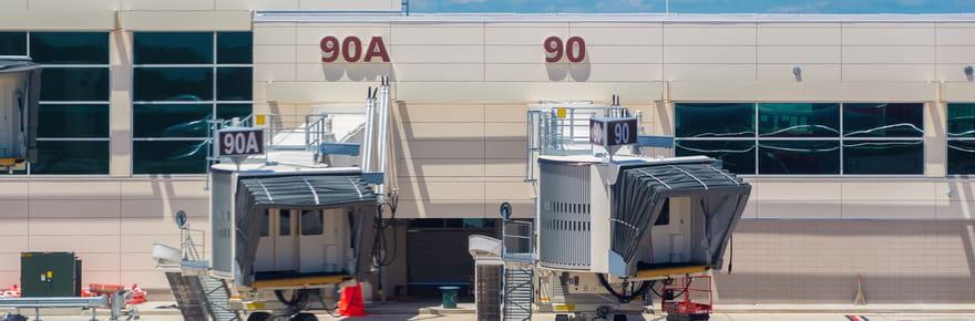 Un alligator s'invite sur une piste d'atterrissage de l'aéroport d'Orlando
