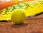 Tennis : Tournoi ATP de Lyon