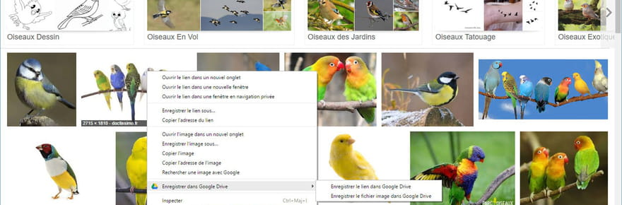 15 extensions indispensables pour Google Chrome