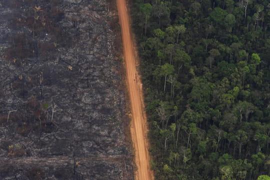 """Amazonie [Direct]: des incendies """"sous contrôle""""? Pas vraiment"""