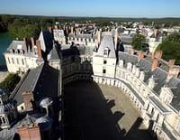 L'ombre d'un doute : Fontainebleau, la demeure des rois