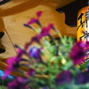 Jardin d'Asie  - jardin d'Asie  -   © jardin d'Asie
