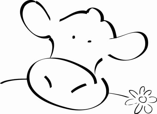Sacrée fleur  - logo -