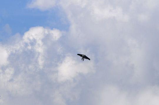 Un atterrissage en parachute