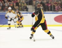 Hockey sur glace - Boston Bruins / Washington Capitals