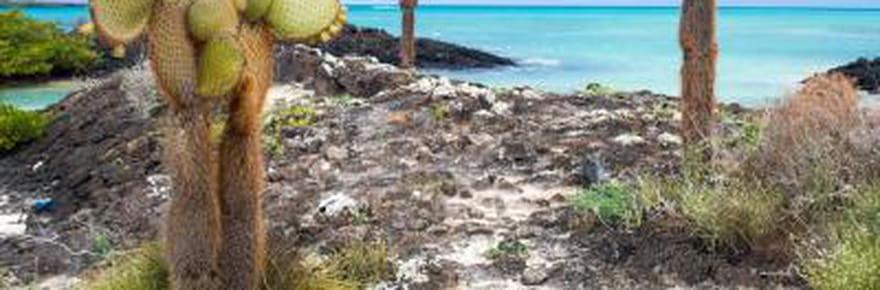 Galápagos, l'archipel enchanté