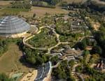 Zoo de Beauval : au coeur de la machine