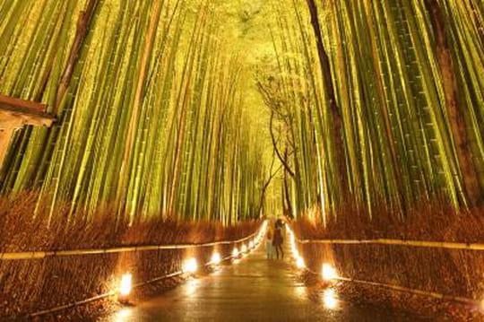 Kyoto: découvrez l'étonnante fête des lumières d'Arashiyama