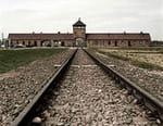 Sonderkommando Auschwitz-Birkenau