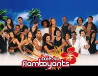 Baie des flamboyants : Temps des fêtes