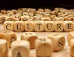 Modules culture prime