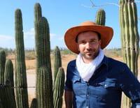 Echappées belles : Savoureux Mexique