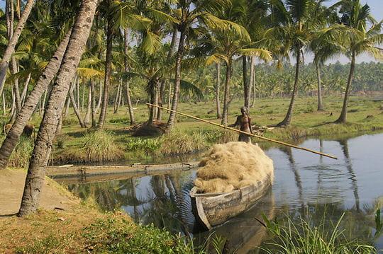 Vert, Kerala