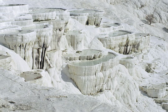Vasques calcaires