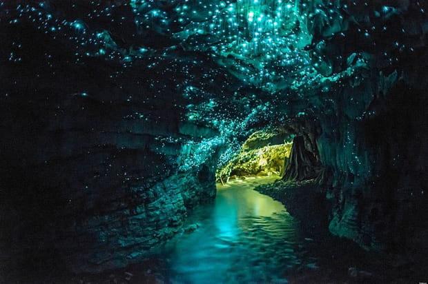 Les grottes de Waitomo en Nouvelle-Zélande