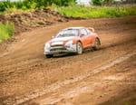 WRC : Rallye arctique de Finlande - Rallye arctique de Finlande