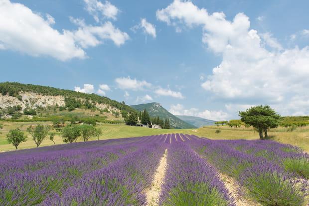 Un week-end dans la Drôme