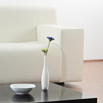 nettoyer un canap en cuir. Black Bedroom Furniture Sets. Home Design Ideas