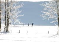 Ski de fond : Coupe du monde - Poursuite 10 km dames