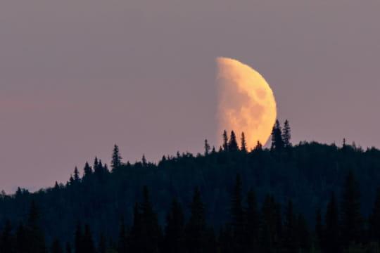 Eclipse de Lune 2019: le show heure par heure