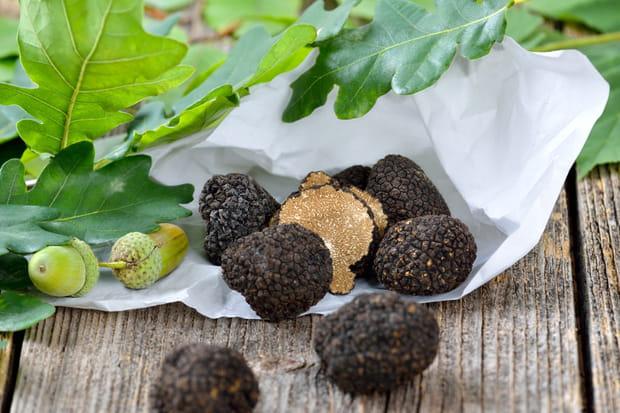 Une dégustation des truffes de Bourgogne