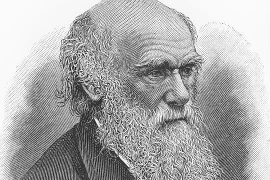 Charles Darwin: biographie et théorie sur l'origine des espèces